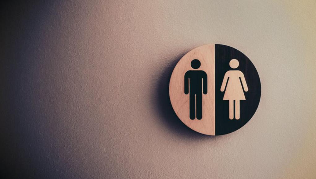 Why Study Gender Studies? 15 Good Reasons