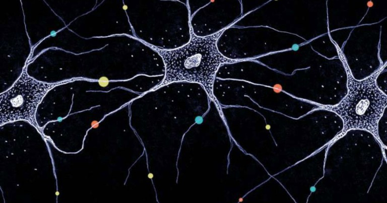 The 18 Most Common Nervous System Diseases