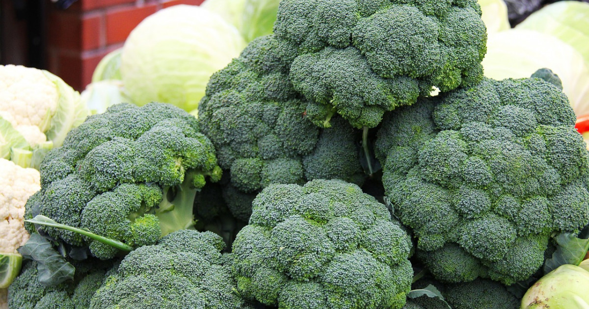 Broccoli: 10 properties and benefits of this vegetable