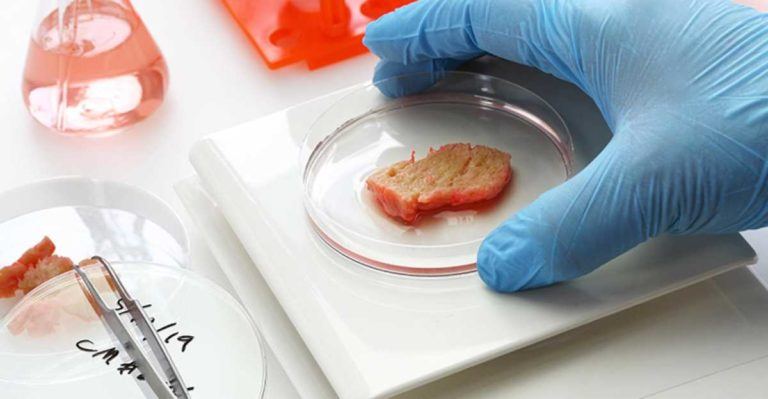 According to new research, The meat, milk and eggs of the future will be manufactured in a laboratory
