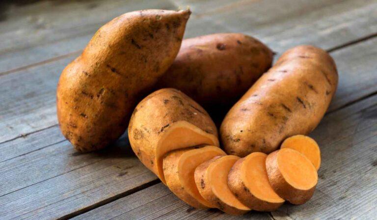Sweet Potato: benefits and incredible properties