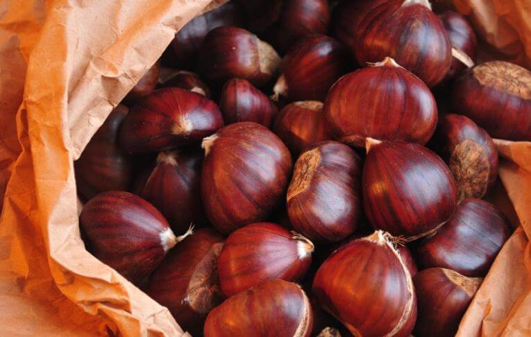 Benefits and properties of chestnuts