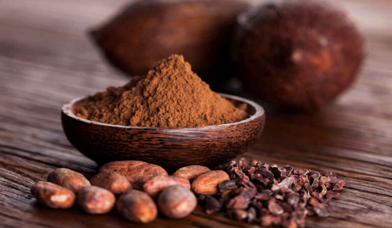 All the benefits of cocoa, properties and contraindications